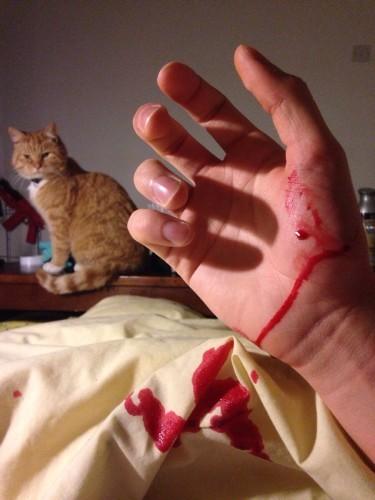 Cats are assholes. (Xpost r/Pics)