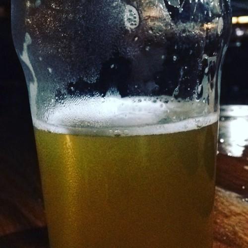 Pint Sized for Real Men #fuckthescooner #pint #mountaingoat #byronbay