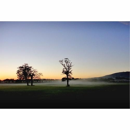 Foggy morning Meadowbrook Park, Dublin #Ireland. #Meadowbrook #irelandaily #Dublin #icu_Ireland #discoverireland #inspireland_ #insta_Ireland #loves_Ireland #bestofireland #irishpassion #irelandaily #wanderlust #thewanderlustjournal #wanderireland #the_photo_lab #thedublinbible #ig_Dublin #dublinviews #Dublinow #igersdublin #lovedublin #dublinsfaircity #IGERSDUBLIN #insp_dub #lovindublin