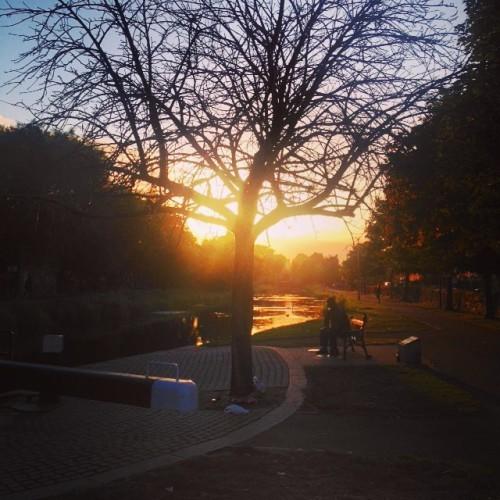 Royal Canal 20:00
