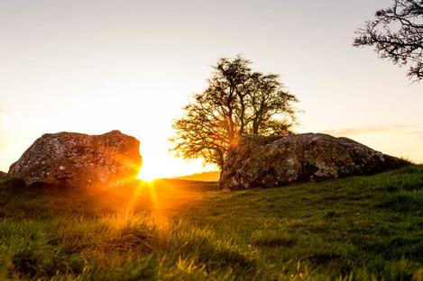 Castleruddery Embanked Stone Circle