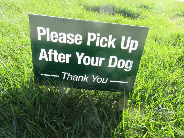 Please pick up after your dog