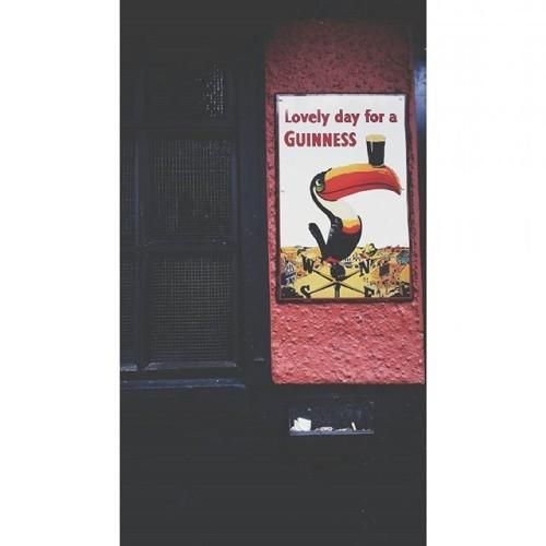 der tukan hat gesprochen ! xxx #guinness#toucan#lovelydayforaguinness#insta#instaphotography#schwarzbiernacht#pubnights#illbethereforyou#corkcityviews#corkcitycentre#aupairsinireland#ireland_inspires#publife#potd#peoplescreatives#ireland_gram#guinnessbeer#theoliverplunkett#cork_city#ladiiiiies