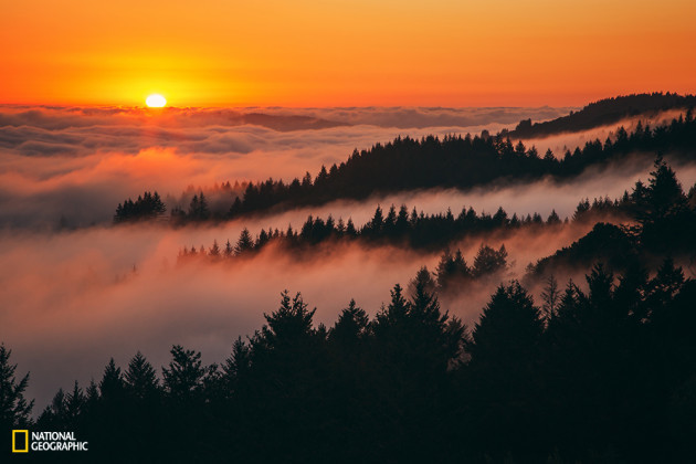 Sunset Above The Fog