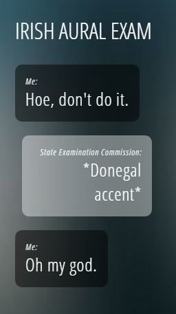 17 Times Irish Tumblr Was Right On The Money The Daily Edge