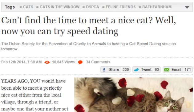 Speed Dating Dublin 2014