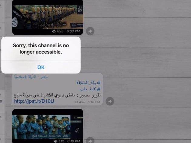 isis telegram suspended