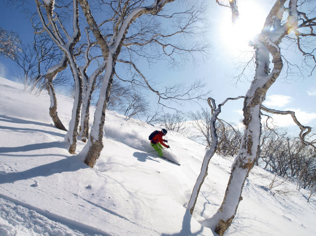 A skier descends a mountain slope with powder snow in the ski area of Niseko, Japan.