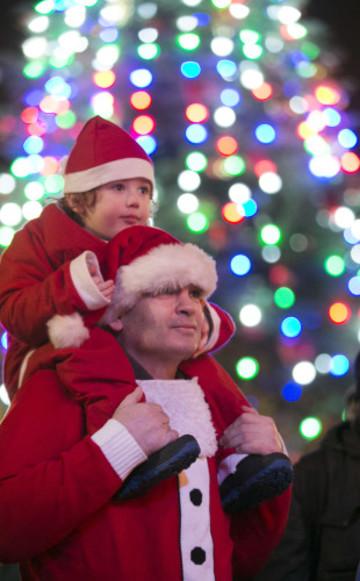 91 NO FEE Christmas  tree Lights