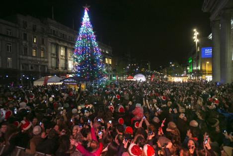 18 NO FEE Christmas tree lights