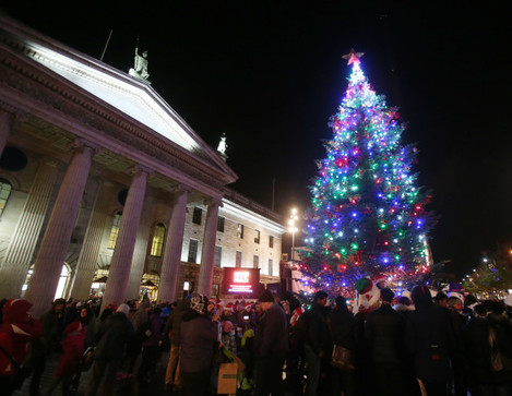 06 NO FEE Christmas Tree Lights