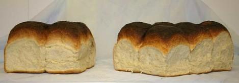 Batch-bread-web