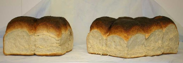 Batch-bread-web