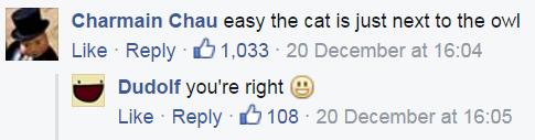 easythecat