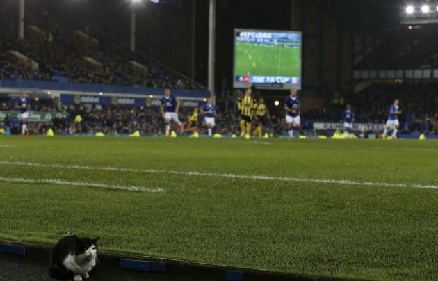 Everton v Dagenham and Redbridge - Emirates FA Cup - Third Round - Goodison Park