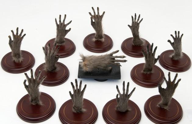 BUSH-12 monkey hands