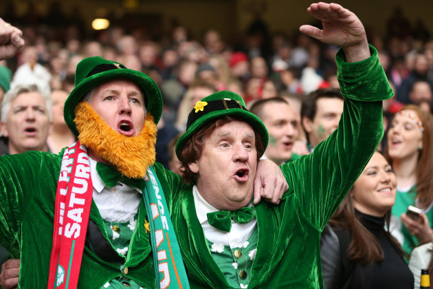 Irish fans at the match