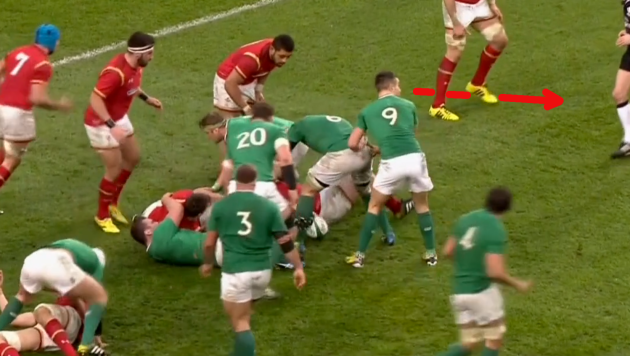 Tipuric Steal