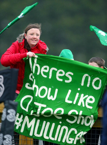 Ireland supporters at the open training session