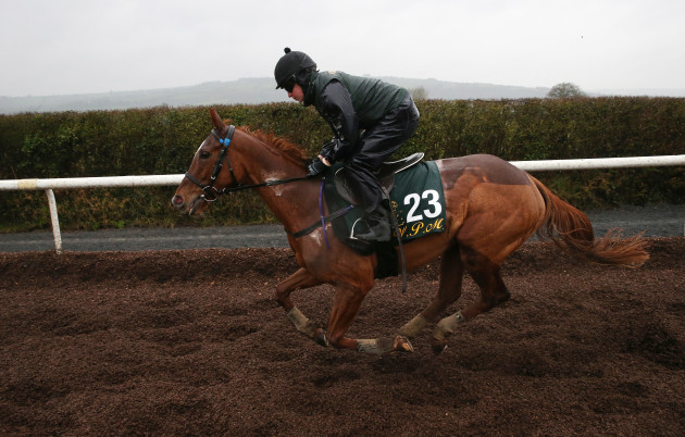 Willie Mullins Stable Visit - Closutton