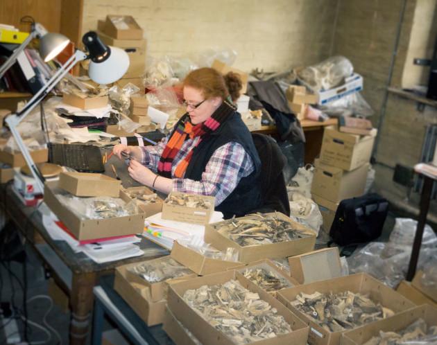 absoluuttinen vs suhteellinen dating Arkeologia