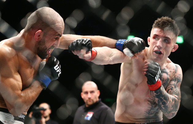 Norman Parke in action Reza Madadi