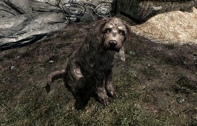 This guy's story of adopting a dog on Skyrim has touched the