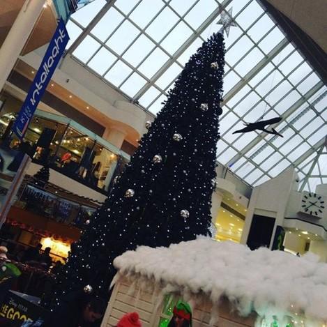 We've got the Christmas feeling #Christmas #santaiscoming