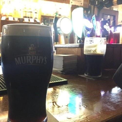 Murphy's is a much better stout. Guinness, step aside. #mattieholidayz #gymratshappydays