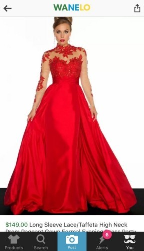 Girl Ordered Prom Dress Online
