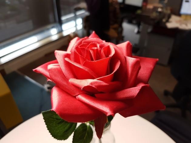 s7 rose