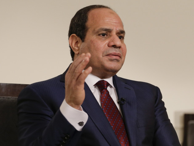 United Nations Summit Egypt Interview