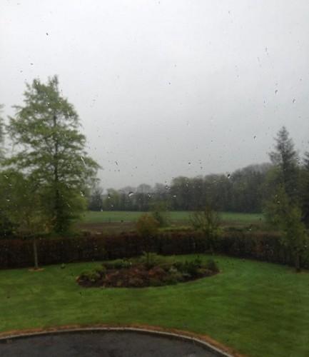 rainsoaked