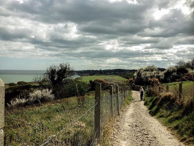 Walk by the sea side #spring #springwalk #cliffwalf #beach #sea #ocean #wicklow #greystones #bray #blueocean #ireland #discoverdublin #discoverireland #Europe #landscape #landscapes_captures #landscape_lovers #igers #igerdublin #field #irishfields #path