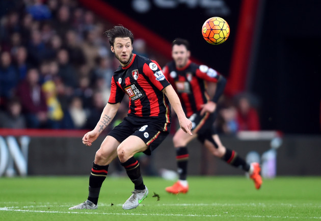 AFC Bournemouth v Crystal Palace - Barclays Premier League - Vitality Stadium