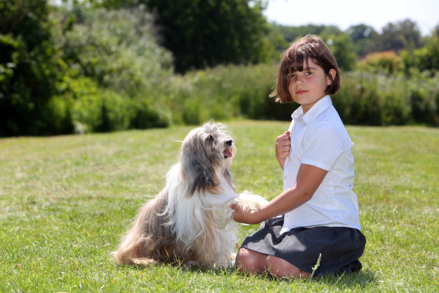 Kennel Club's Safe and Sound Quality Kitemark Resource launch