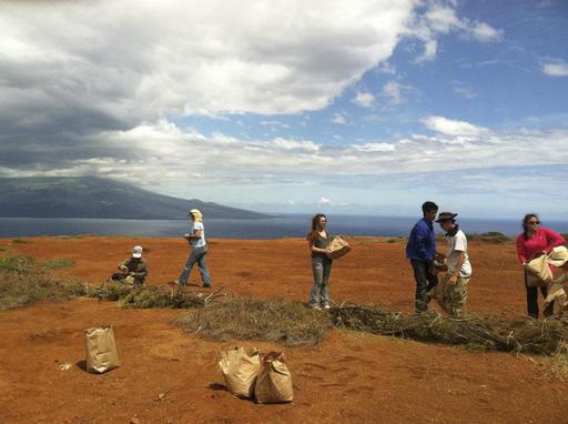 Hawaii Bombed Island