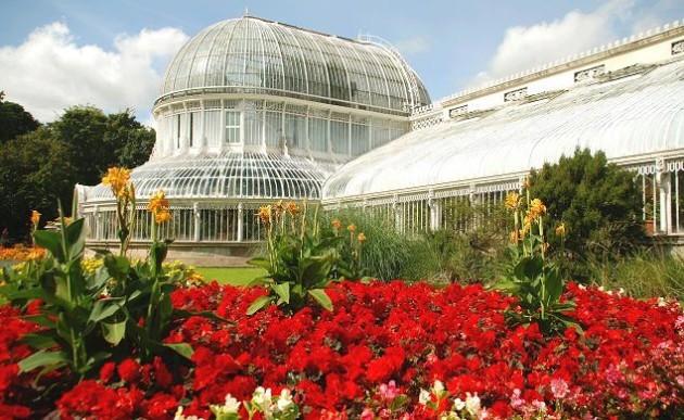 Flower_bed,_Botanic_Gardens,_Belfast_-_geograph.org.uk_-_1454550
