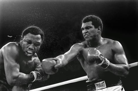 Tim Dahlberg Boxing