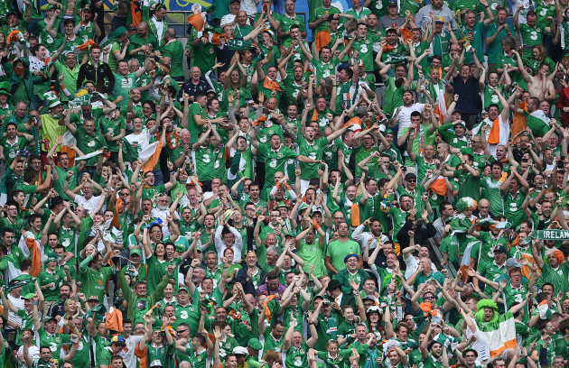 Ireland fans celebrate after Wes Hoolahan scored a goal