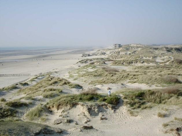 Berck_-_Les_dunes
