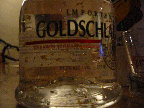 gallery-with-dates-and-descriptions 2003-04-27_goldschlager_shawn-zach_study IMG_0814