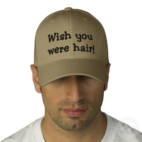 wish_you_were_hair_hat-p233653763200746168b04rf_512