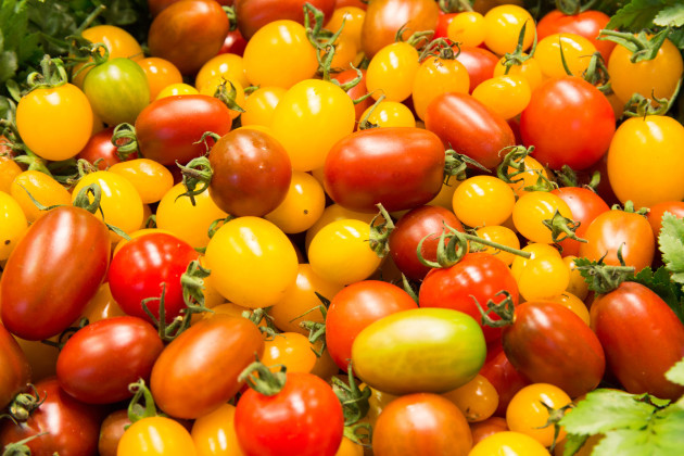 Everything you wanted to know about tomatoes but were too