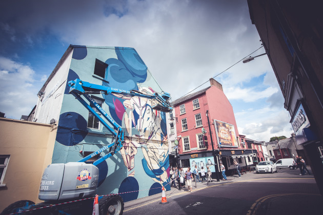 Waterford Walls Festival - 2015