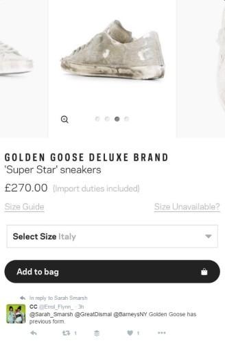 goldengoose