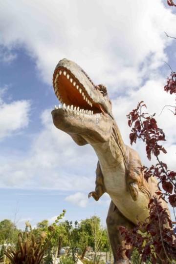 Dinosaurs may be extinct b