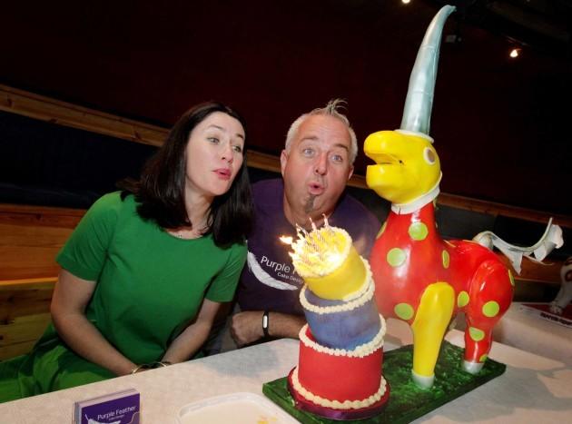 NO FEE 20 The Ark Birthday Cake Exhibition