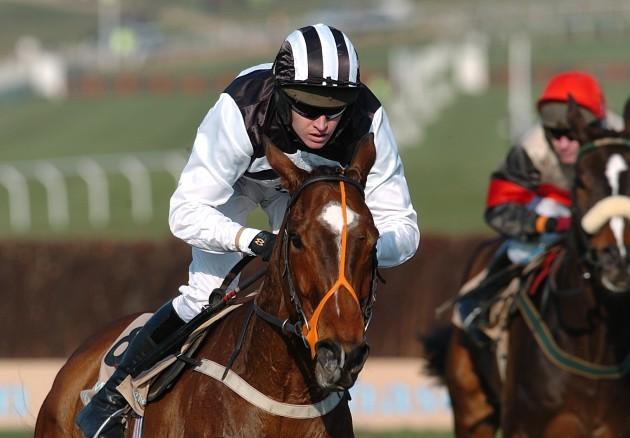 Horse Racing - Cheltenham Festival - Queen Mother Champion Chase Day - Cheltenham Racecourse