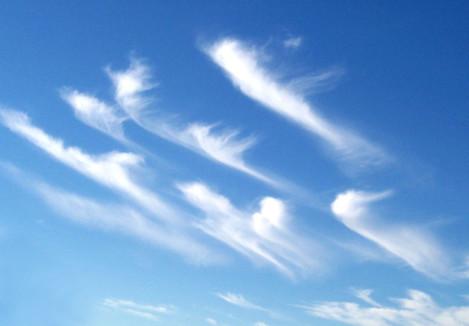 Cirrus_clouds2